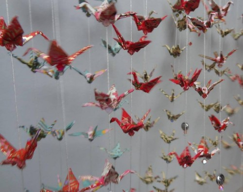hemingbird oiseaux.jpg