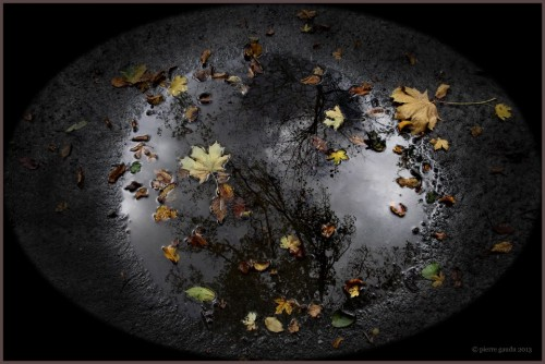 Pierre GauduPluie et automne.jpg