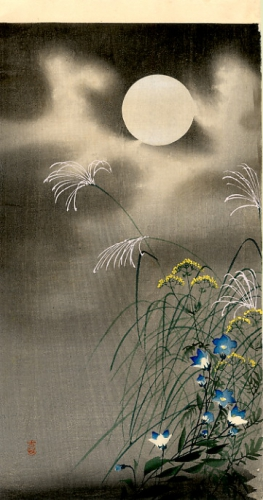 moon-and-blue-flowers.jpg