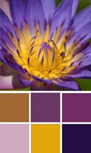 ColourSchemes3.jpg