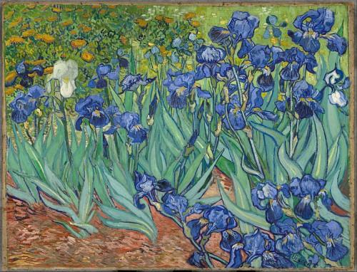 Vincent van Gogh, les iris.jpg