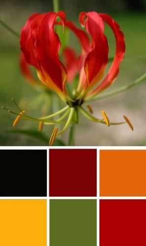 ColourSchemes8.jpg