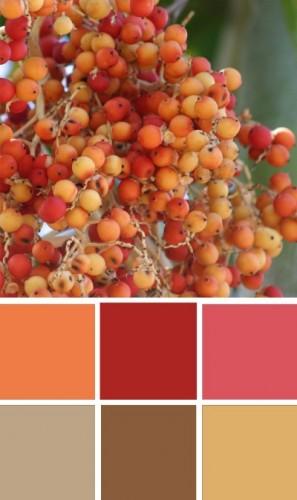 ColourSchemes5.jpg