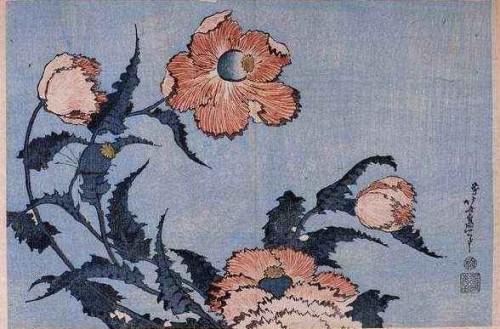 coquelicots en juillet,sylvie plath,hokusai