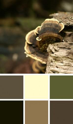 ColourSchemes2.jpg